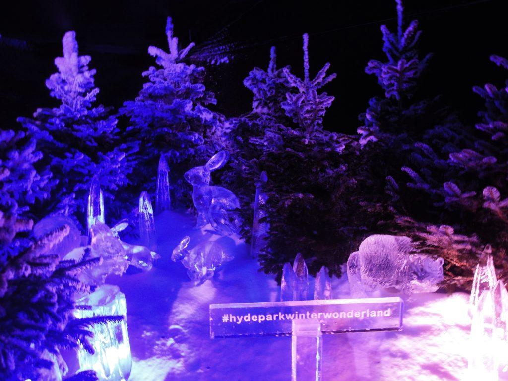 Frozen Forest a Winter Wonderland