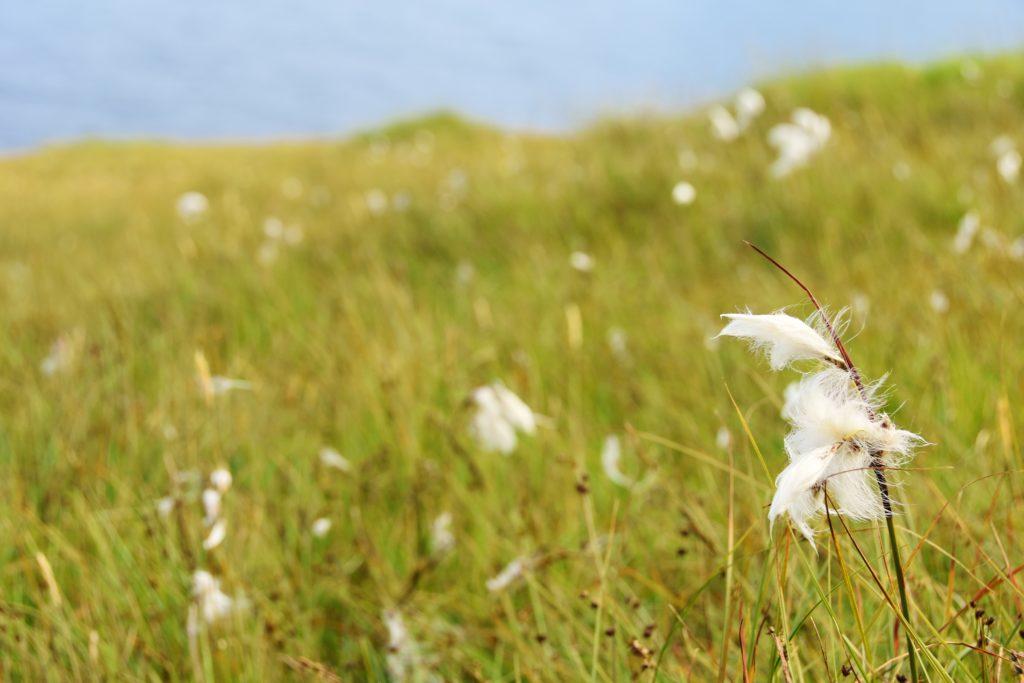 5 trekking (+1) da fare assolutamente alle Isole Faroe