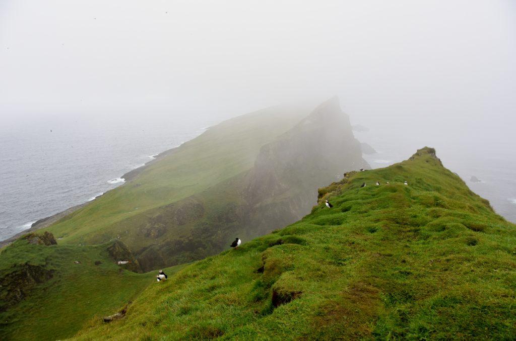 Pioggia e nebbia sull'Isola di Mykines