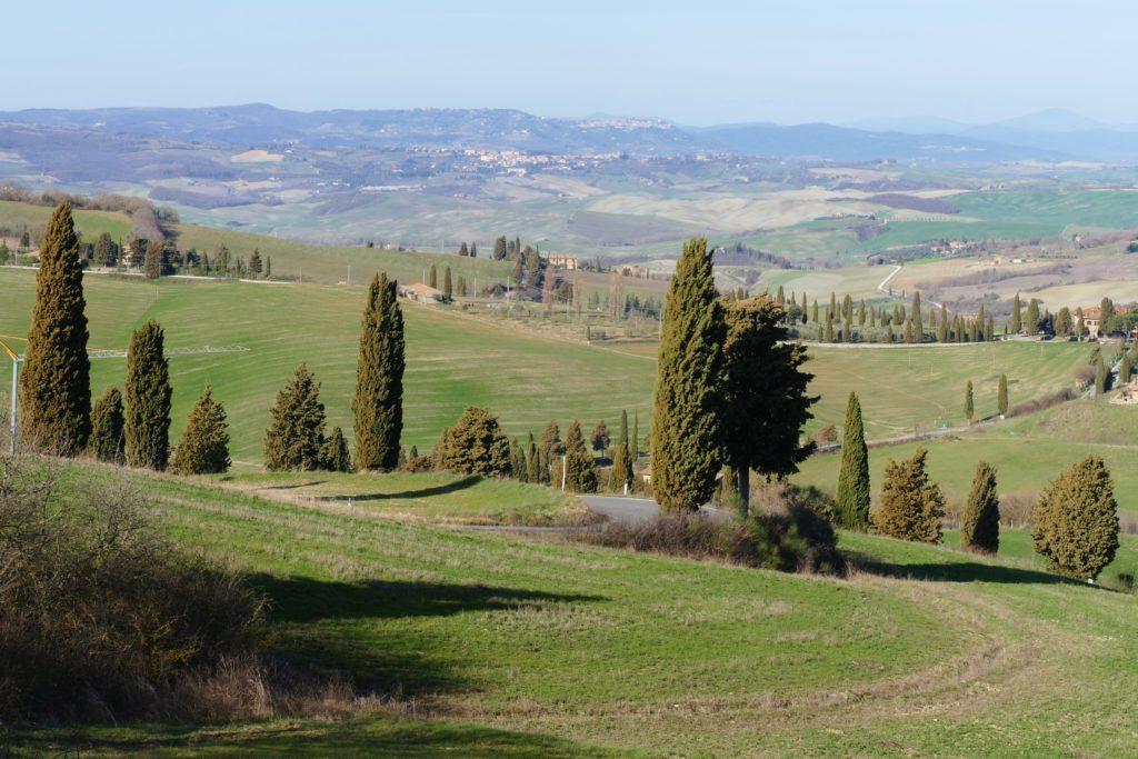 La strada dei cipressi che porta a Monticchiello