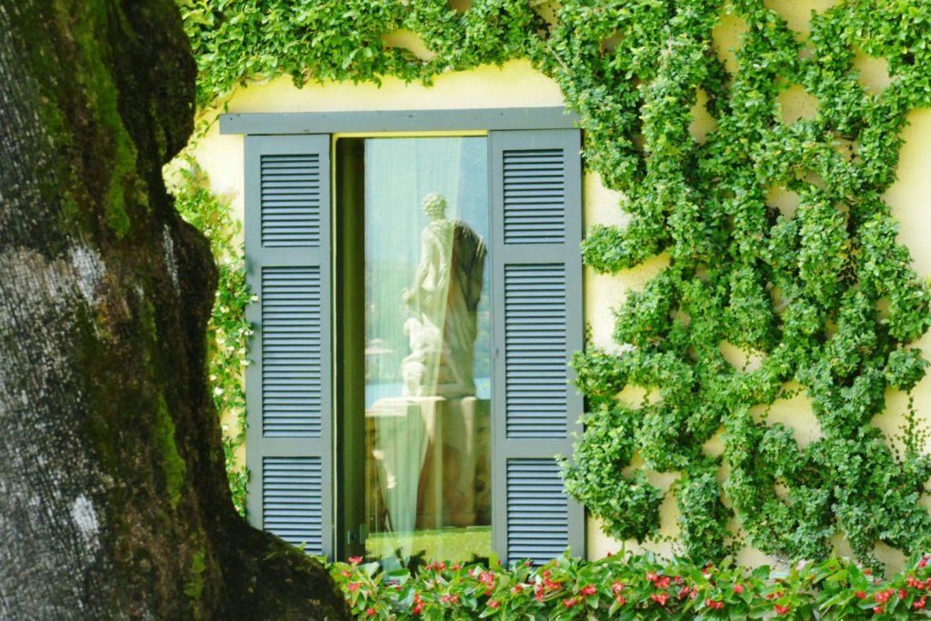Le finestre affacciate sul giardino