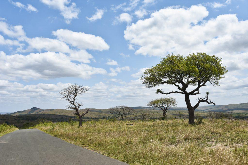 6 parchi del Sudafrica da non perdere oltre al Kruger