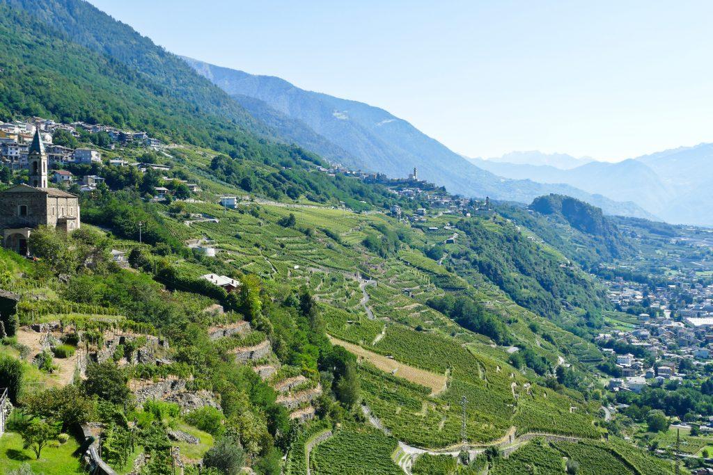 I terrazzamenti vitati in Valtellina