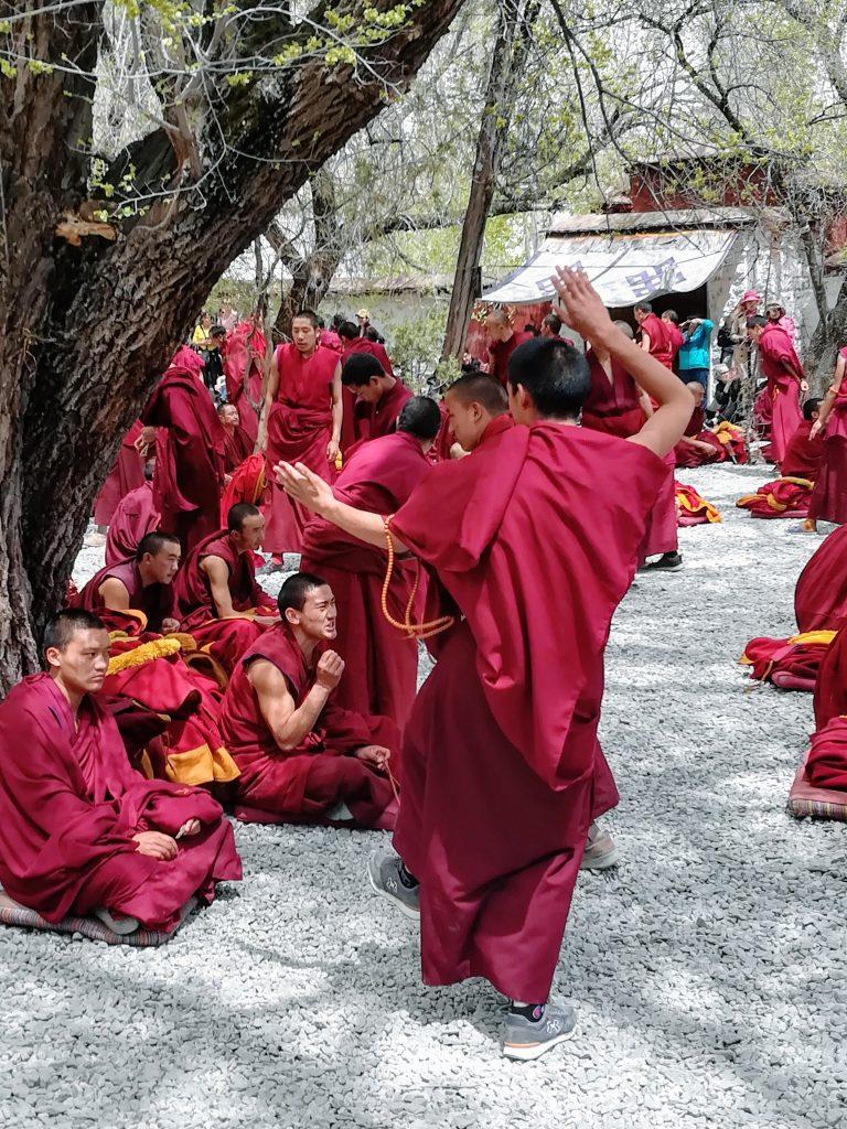 Dibattito tra monaci al monastero di Sera