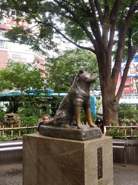 La statua di Hachiko a Shibuya