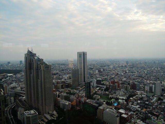 La vista dal Tokyo Metropolitan Bulding
