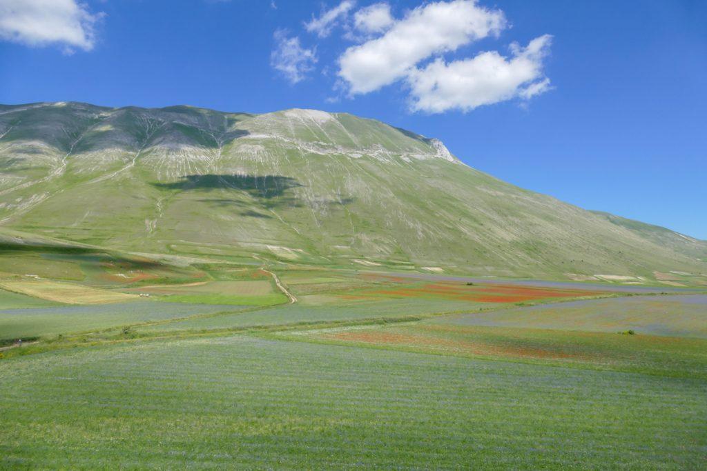 Il Monte Vettore e la Piana fiorita