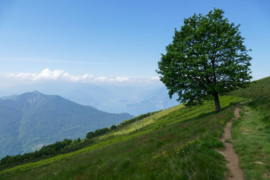 Sentiero dell'anello Monte Muggio