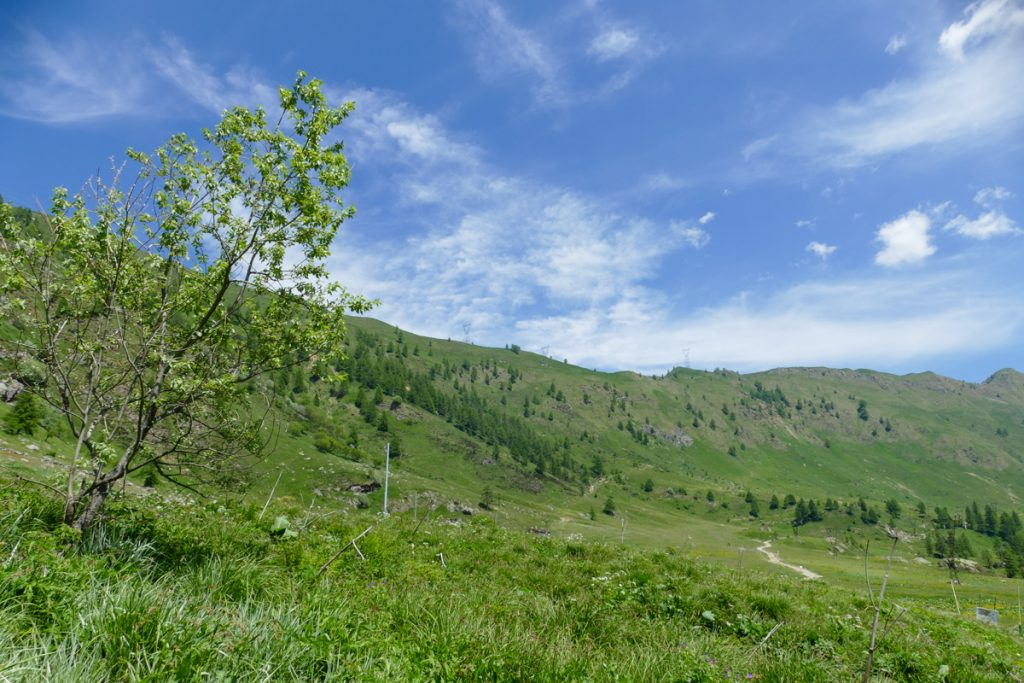 La conca verde della Val Biandino
